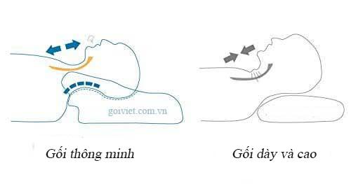 chon_goi_phu_hop